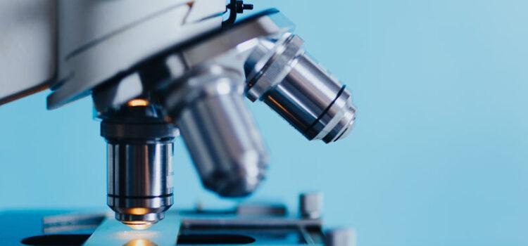 Il microscopio più potente del mondo grazie alla scansione 3D